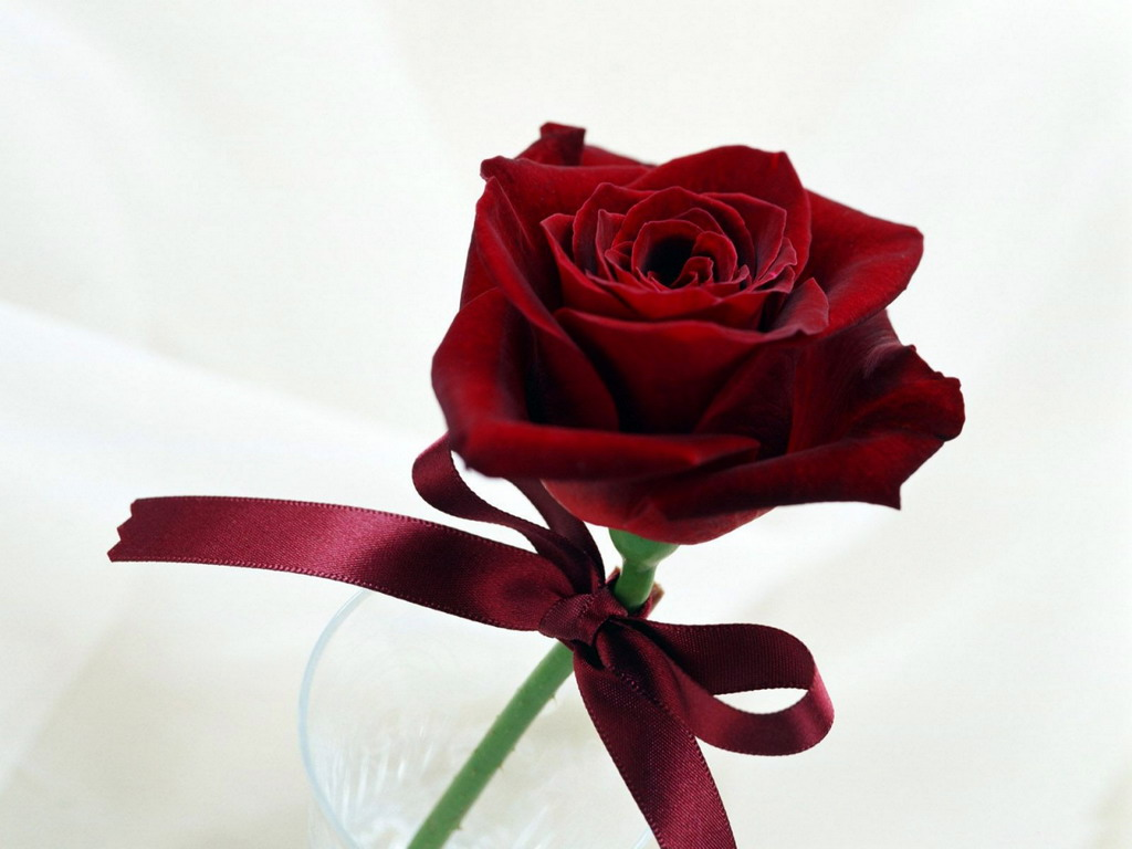 скачать картинки роз букеты